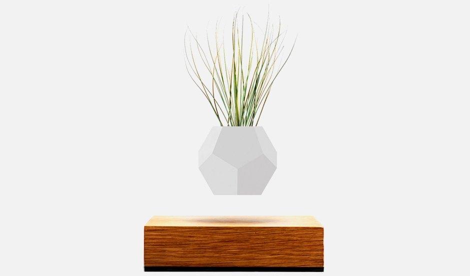 Вингардиум левиоса: Горшок с цветком,  парящий в воздухе. Изображение № 1.