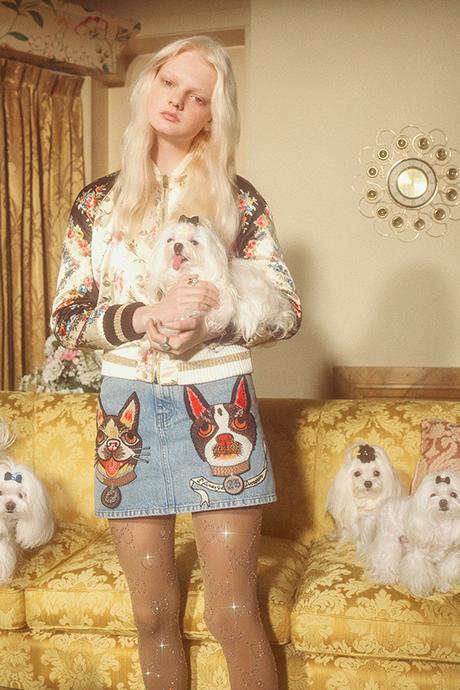 Новая кампания Gucci с умилительными псами. Изображение № 8.