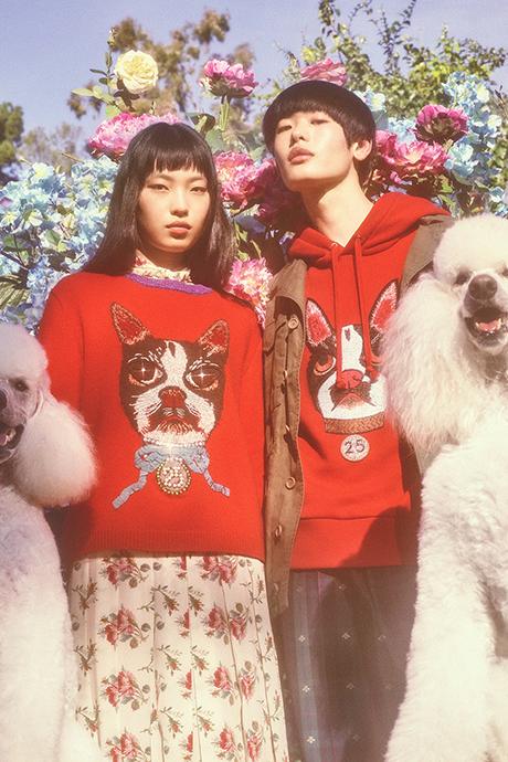 Новая кампания Gucci с умилительными псами. Изображение № 12.