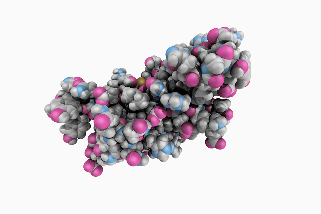 Прионы: Что мы знаем о белках, которые убивают. Изображение № 1.