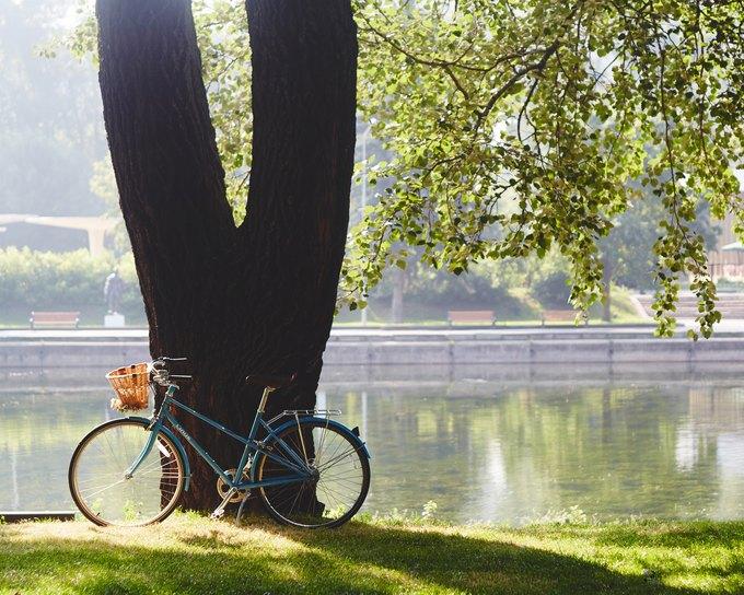 Kixbox и City Cycle выпустили второй совместный лукбук. Изображение № 1.