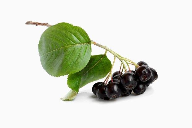 Фестиваль варенья: Рецепты заготовок  из фруктов и ягод. Изображение № 7.