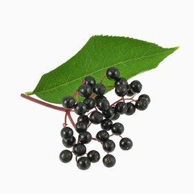 Что есть осенью: 10 полезных сезонных продуктов. Изображение № 6.