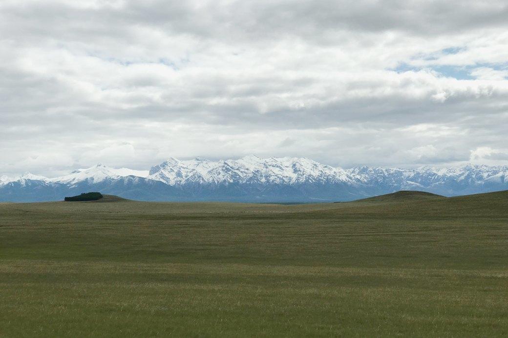 Три лошади и Чука: Как я путешествовала по Монголии. Изображение № 1.