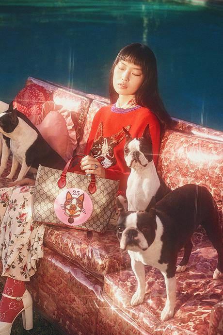 Новая кампания Gucci с умилительными псами. Изображение № 2.