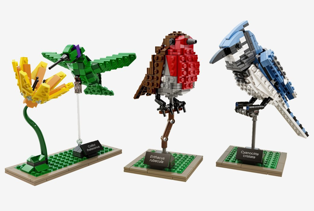 Элегантный набор LEGO «Птицы». Изображение № 1.